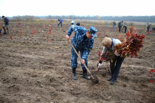 Сотрудники ИК-5 УФСИН России по Орловской области приняли участие в всероссийской акции «Живи лес!»